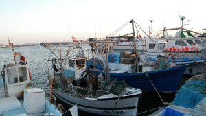 pescadors-de-roses_640x480