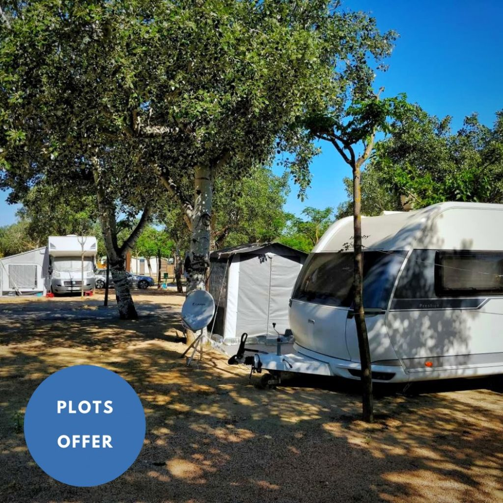plots offer camping joncar mar